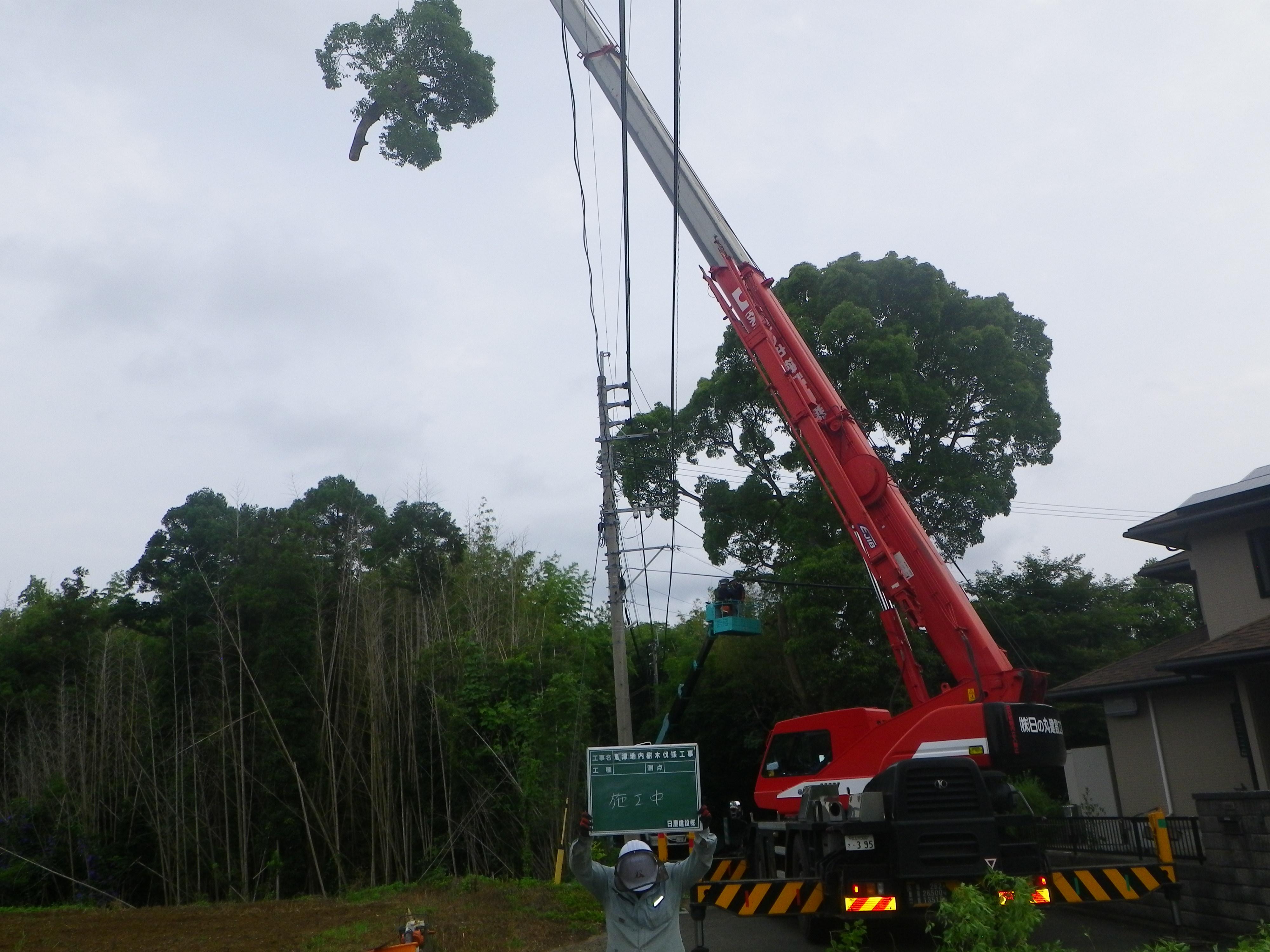 遠賀町樹木伐採工事