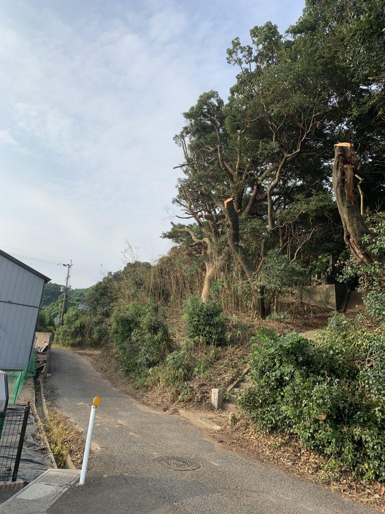 吉浦邸樹木伐採工事