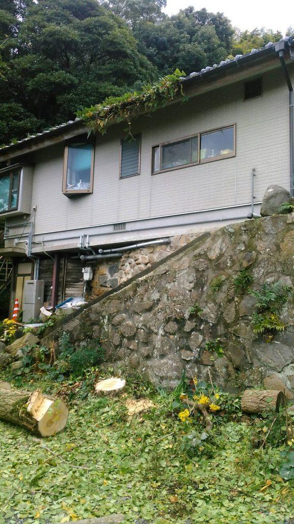imayoshi bassai