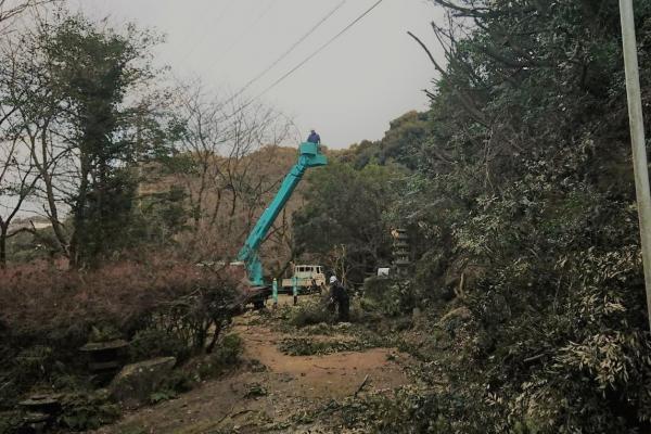 H30/1 佐賀県 S教会伐採工事