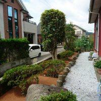 2017/7/1 小倉南区のS邸をガチン固施工。植木周りをガチン固にして、草取りいらずになりました!
