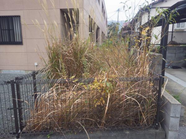 2017.11月マンションの防草対策工事
