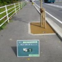 H24年度 公共工事実績 北九州市 臨港1号線道路植栽工事 若松ボート前植樹桝