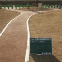 H24年度公共工事実績 北九州市 枝光尾倉3号線他街路植栽整備工事 いのちのたび博物館横園路
