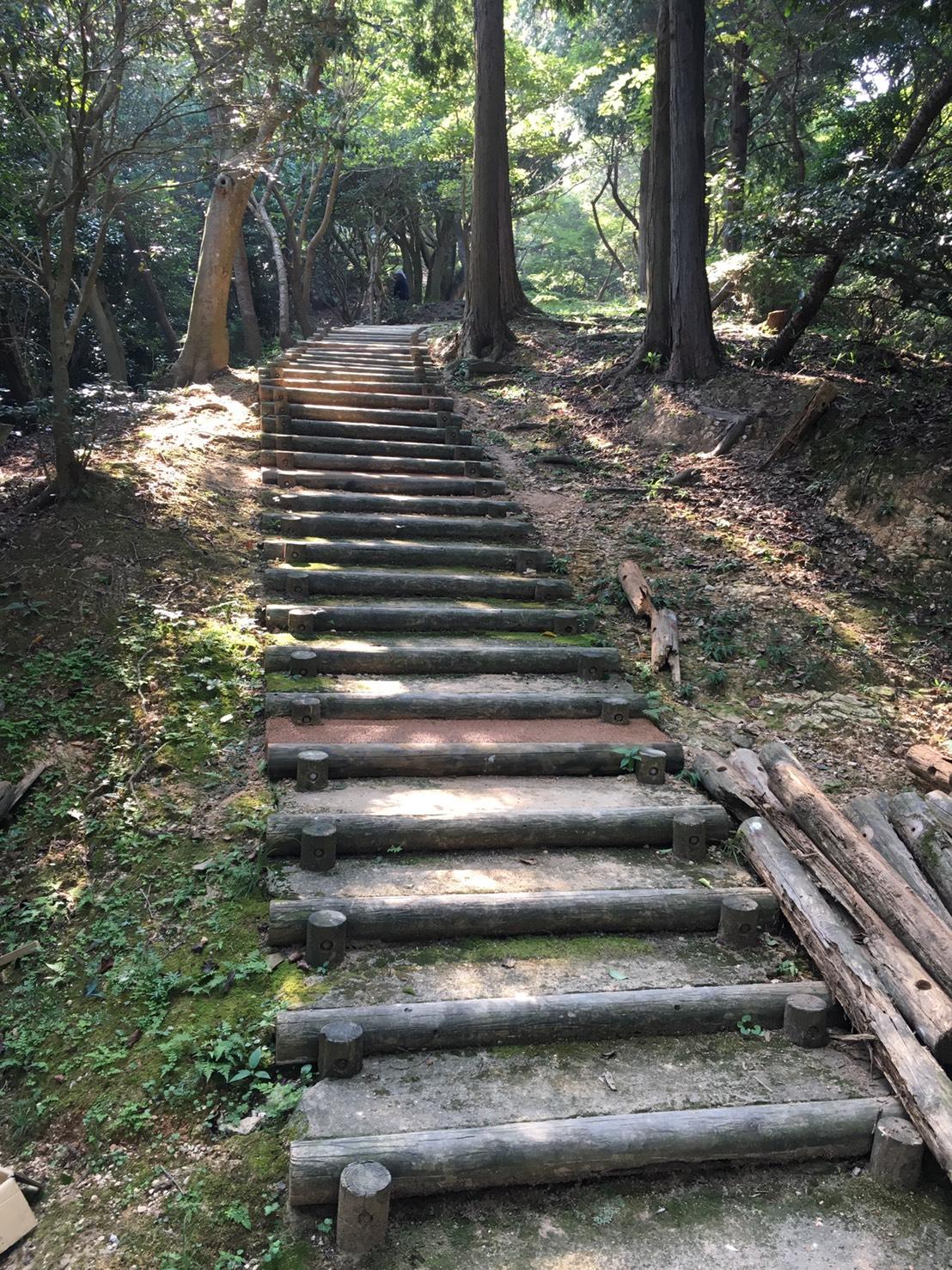 白野江植物園園路改修工事 8/20施工 門司区