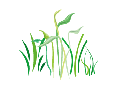 草むしり・草刈り