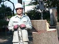 大木切りスタッフ